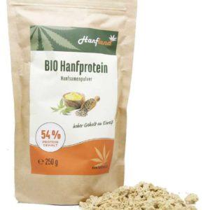 Bio Hanfprotein 54%